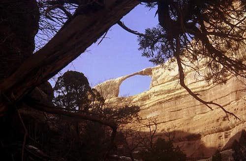 Castle Arch
