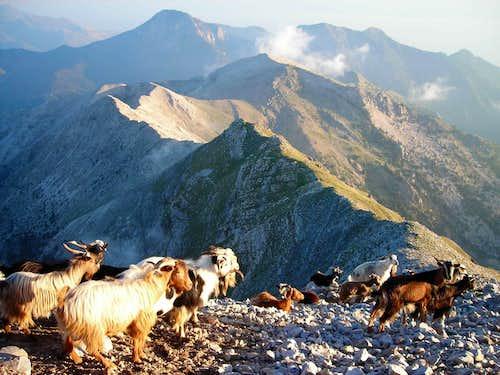 Taygetos Mt, Greece