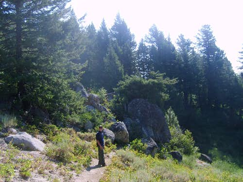 Mores Trail