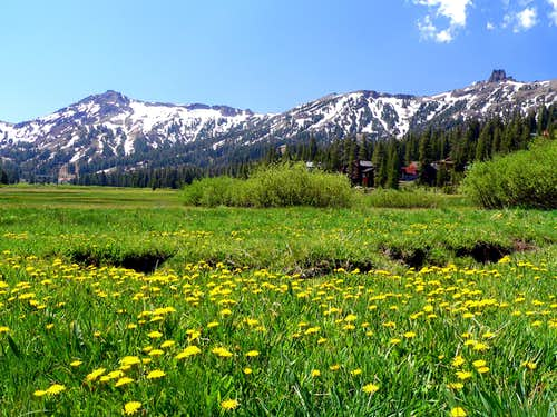 Kirkwood Meadows
