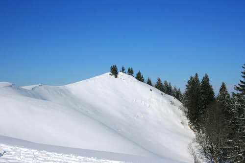 Ochsenwaldköpfl, 1.270m