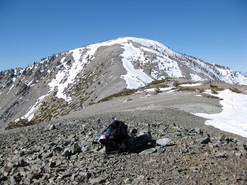 Mt. Baldy from Harwood Summit