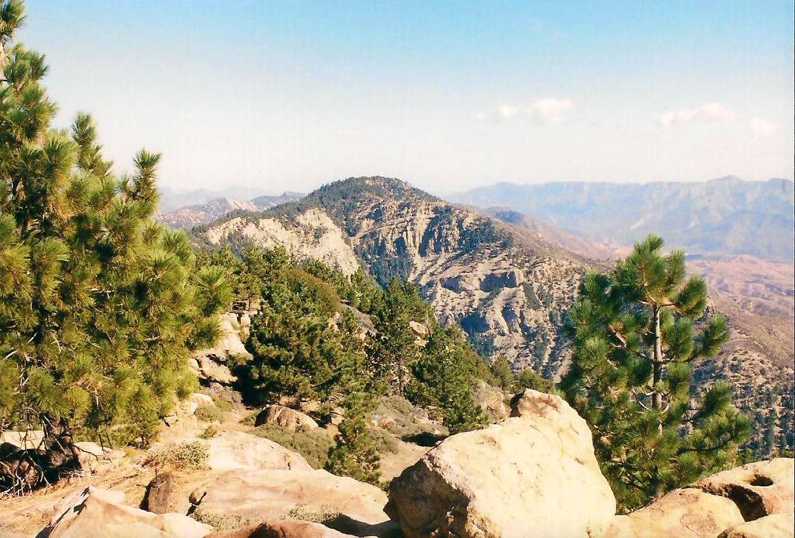 Summits of Mount Pinos and Reyes Peak
