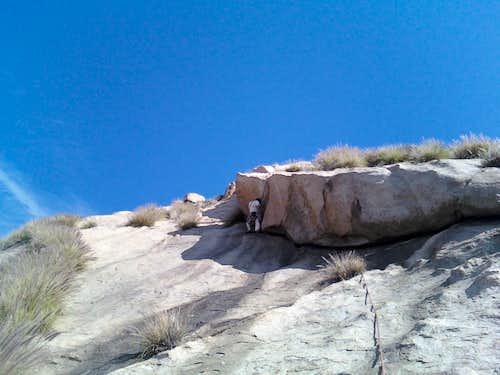 Box Springs Climbing