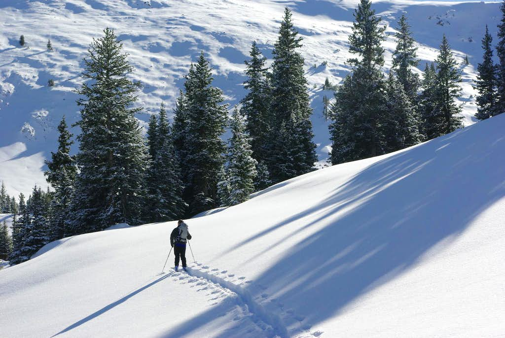 New Snow near Blackmore