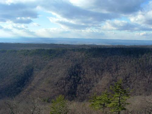 Looking West From Strickler Knob Trail