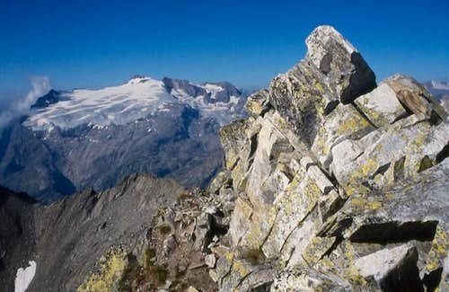 The summit of Cristallina. In...