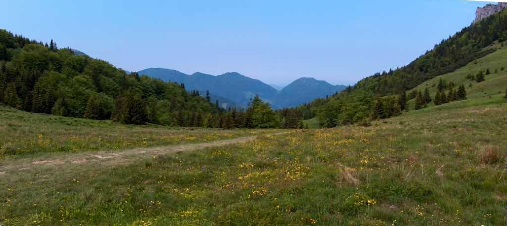 From Štefanová to pass Sedlo Medziholie