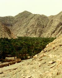 In the  Sinai Desert