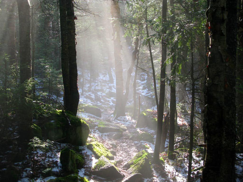 Spotlight on the Kilkenny Ridge Trail