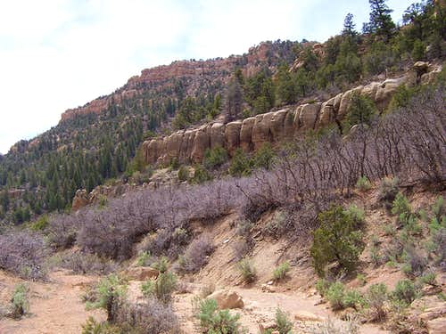 Thompson Canyon