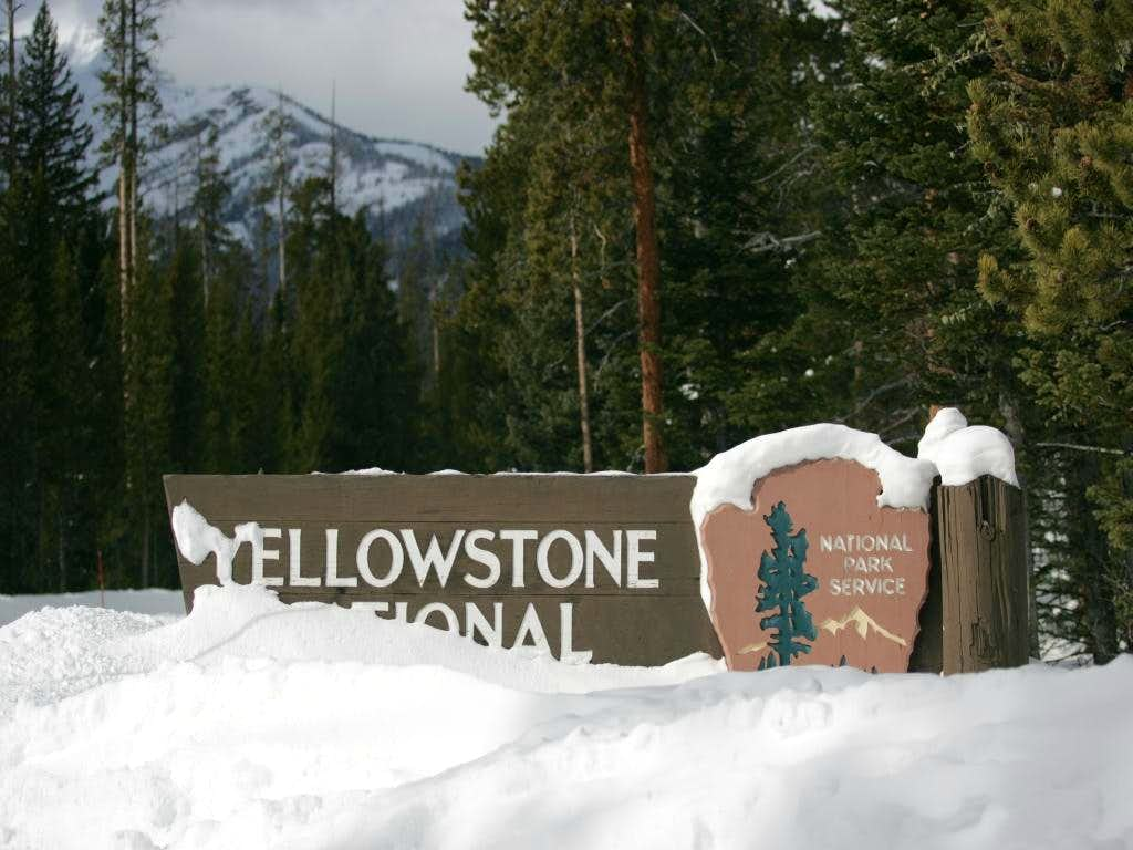 The Great Yellowstone Adventure of 2009.