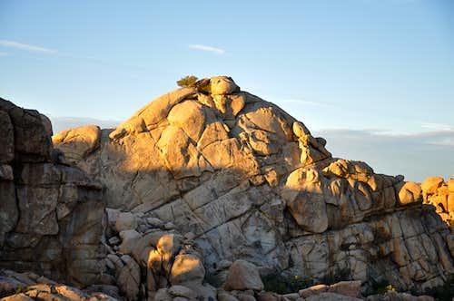 Sunrise on East Face of Sentinel Rock