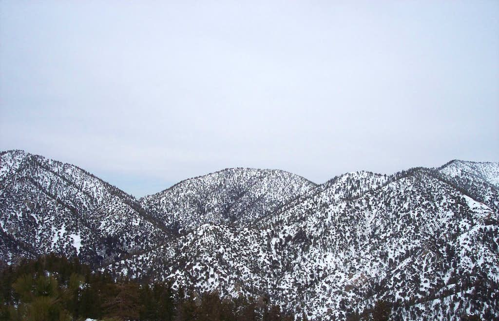 Pallet Mountain