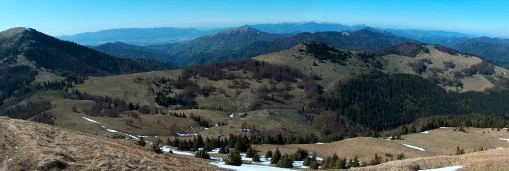 Pastoral landscapes on the meadows west from Ploská