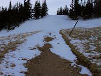 Trail Near Summit