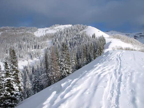 Willow Fork/USA Bowl ridge