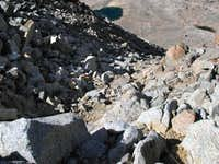 Mount Agassiz - Looking down...