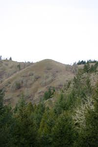 Round Timber Mountain