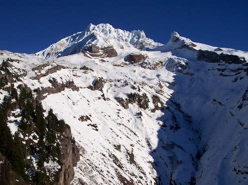 Hood from the Yocum Ridge trail