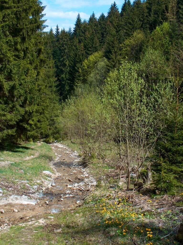 The Veľký Choc trail