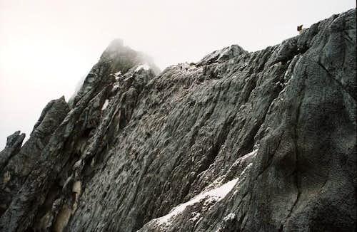 The carstensz pyramid summit...
