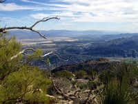 Skyline Trail - View of Palm Springs