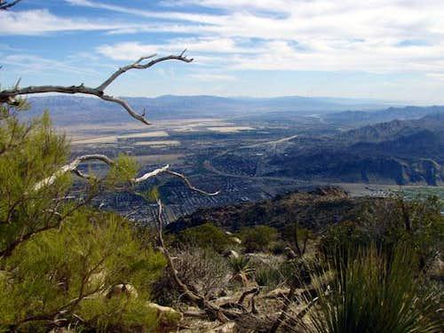 Skyline Trail - View of Palm Springs