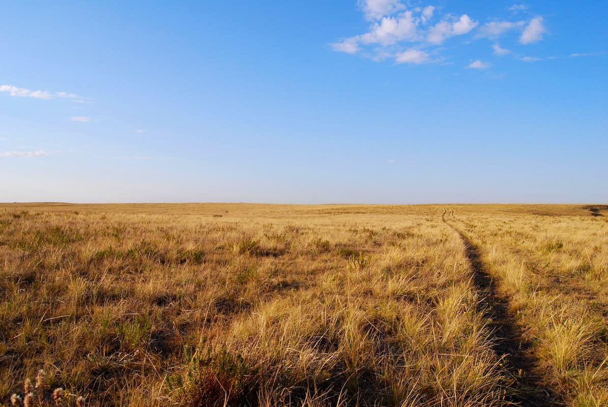 autumn prairie : Photo...