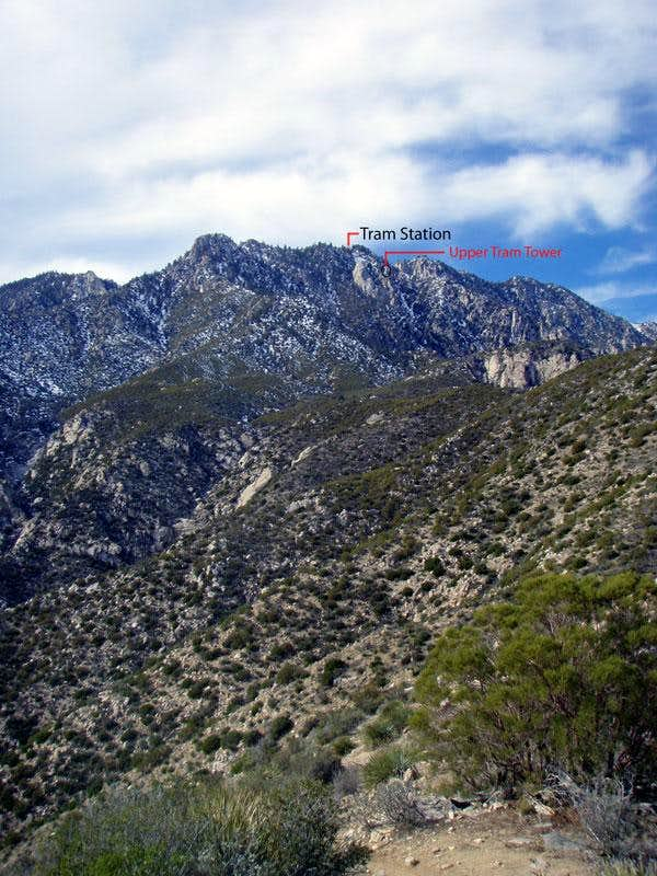 San Jacinto\'s Skyline Trail Jan 20, 2009