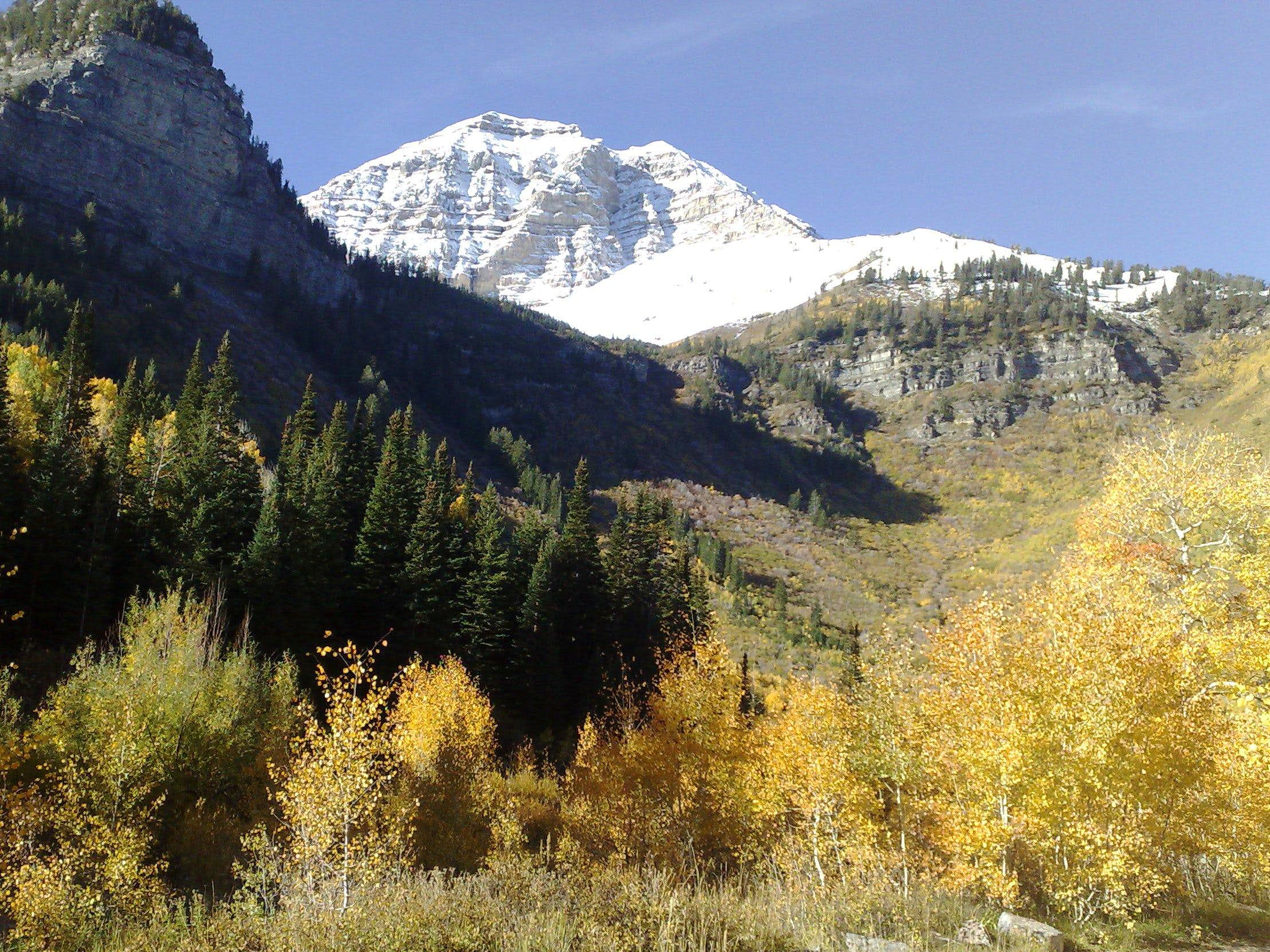 Northern peak of Mt. Timpanogos elev. 11,441 ft