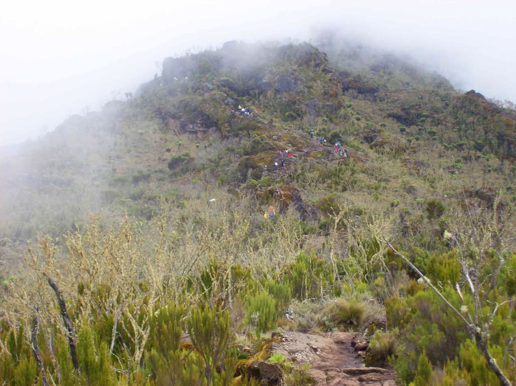 Machame Route Day 2