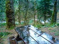 Dougan  Creek #3