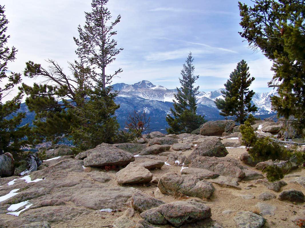 Deer Deers Deer Mountain Trail From Deer