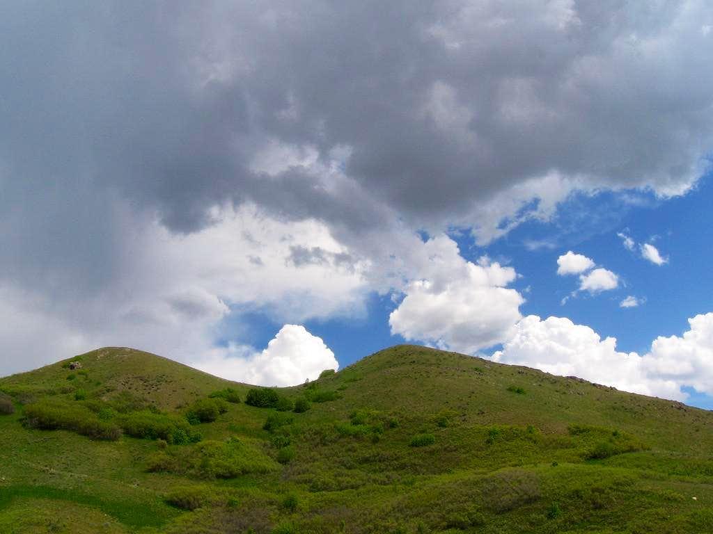 Avenues Twin Peaks