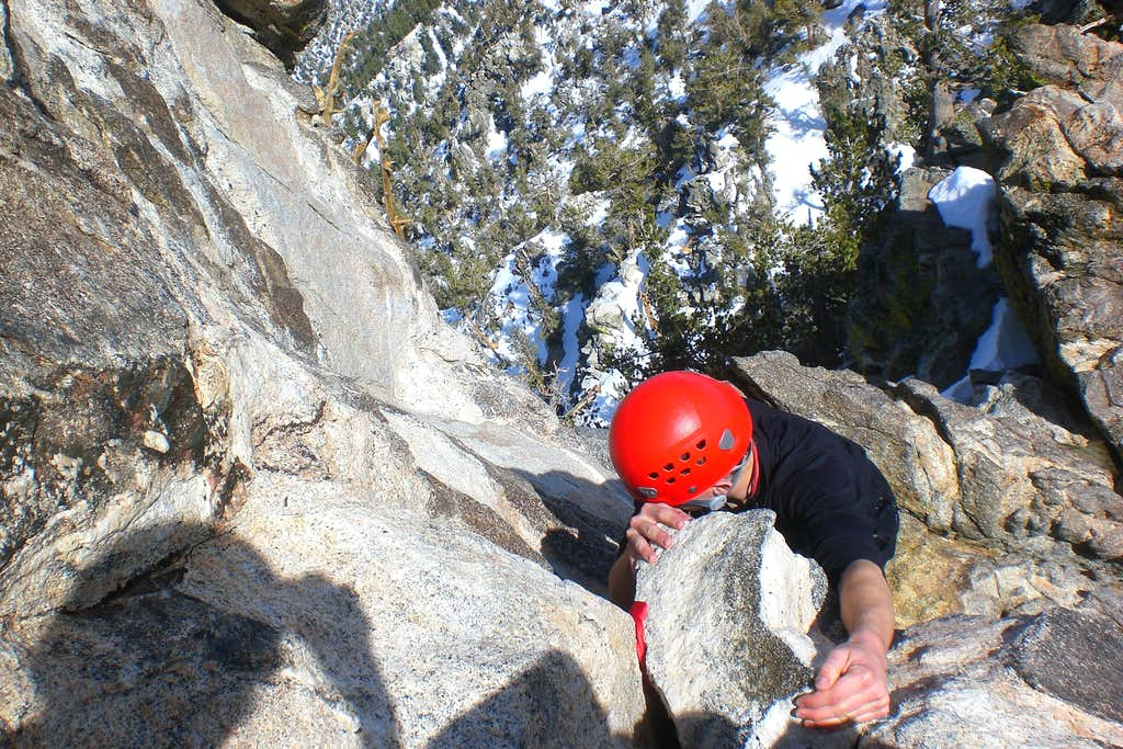 Gene Climbing