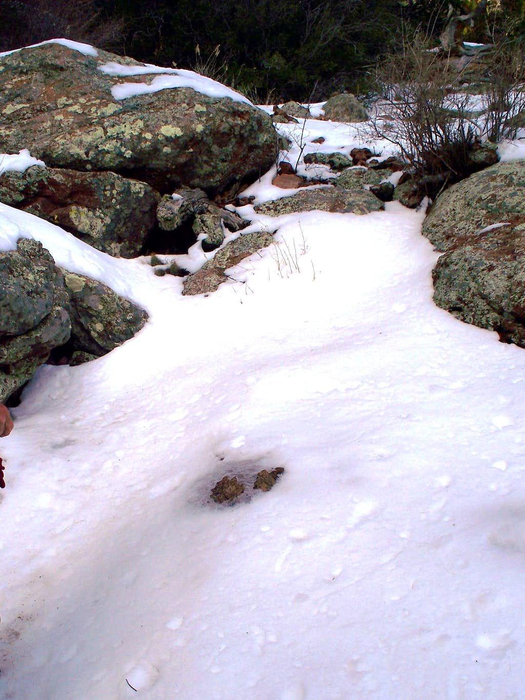 Desert Snow Slog