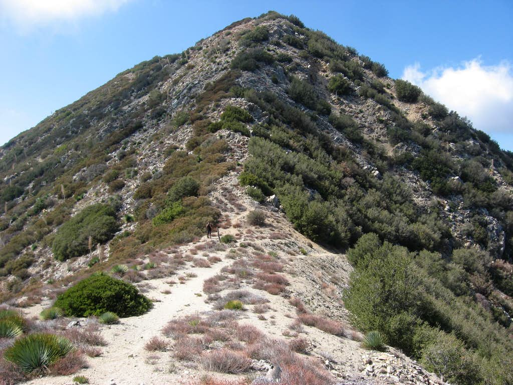 Condor Peak