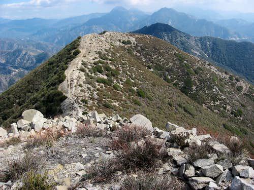 Atop Condor Peak