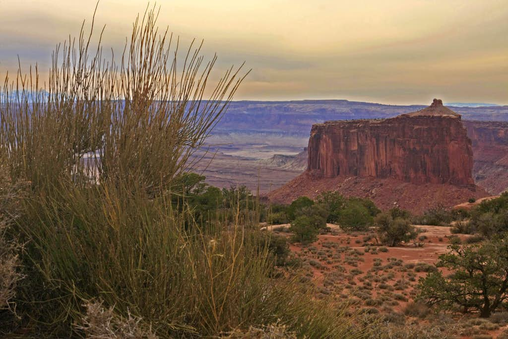 Canyon Butte