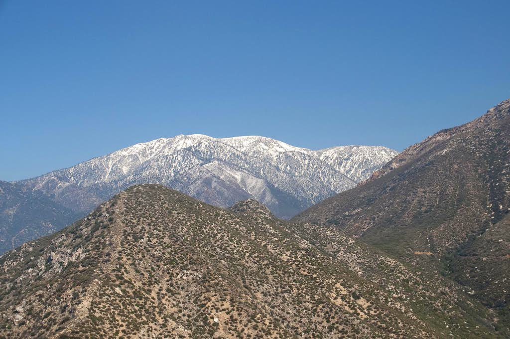 Mount Baldy from Stoddard Peak