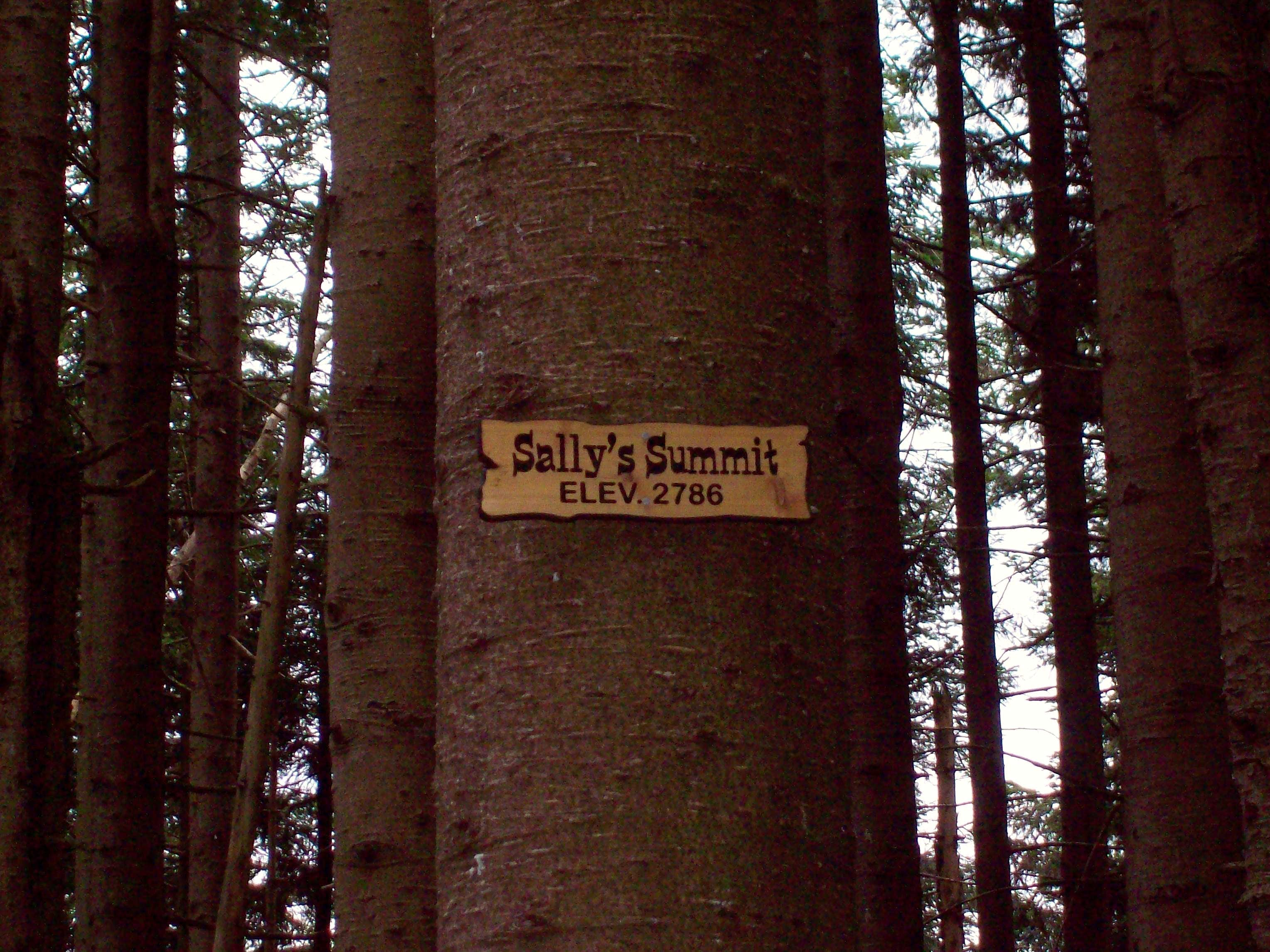 Sally\'s Summit