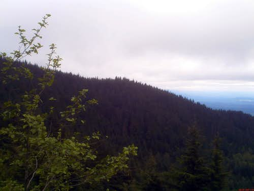 Lookin at Sally\'s Summit