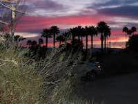 Palm Springs dawn