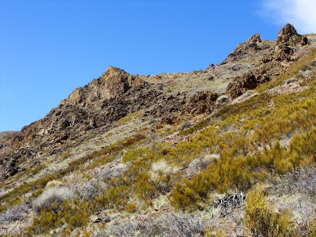 The rocky summit area