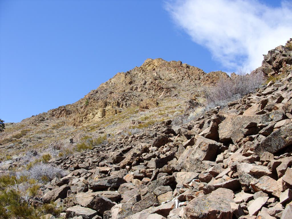 View up the lower boulder field