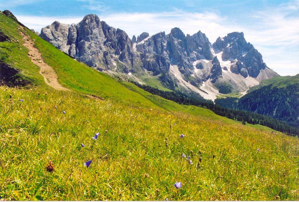 Pale di San Martino:  view from Forcella Venegia