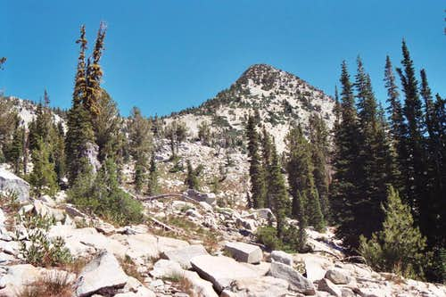 Needle Point - West Slope