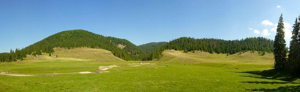 Truly Transylvania