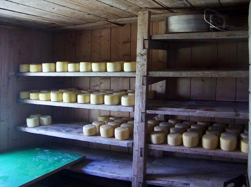Planina v Lazu, cheese-making